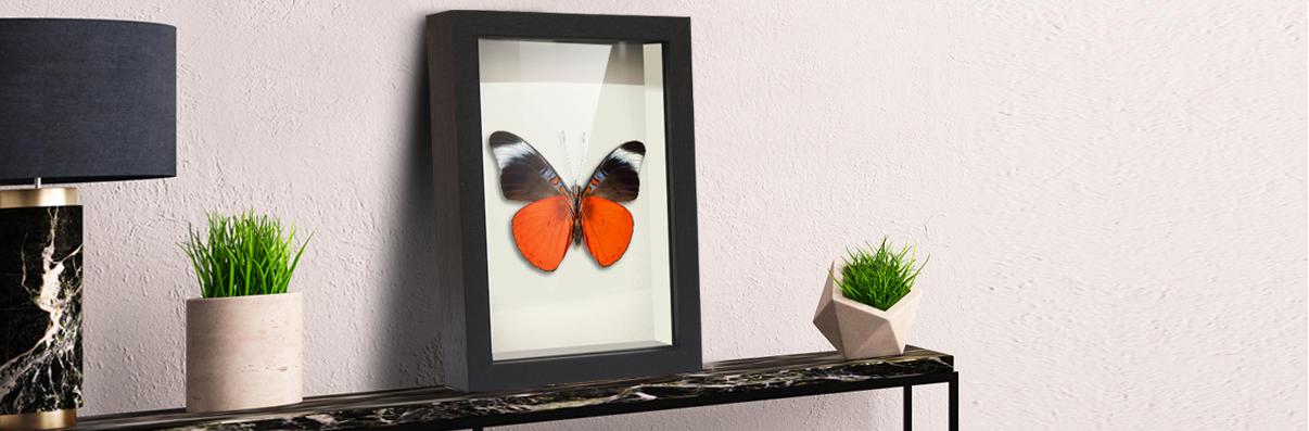 Custom Made Shadow Box Frames | Baby Memory Boxes | Keepsake Box